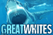 Sharks: Great White