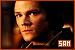 Supernatural: Sam Winchester