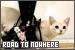 Road to Nowhere > Melanie